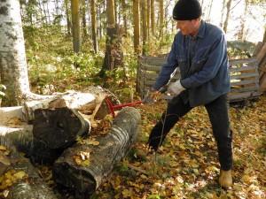 Apuvoimaa metsätyöhön